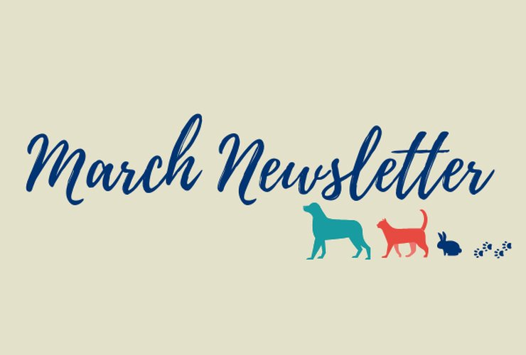 Our March Newsletter is here!