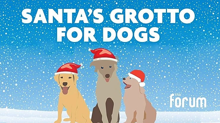 Santa Paws Grotto – 8th December