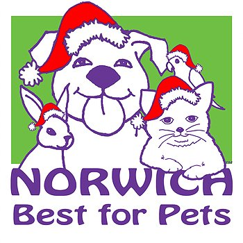 Norwich Best for Pets Fashion Show!