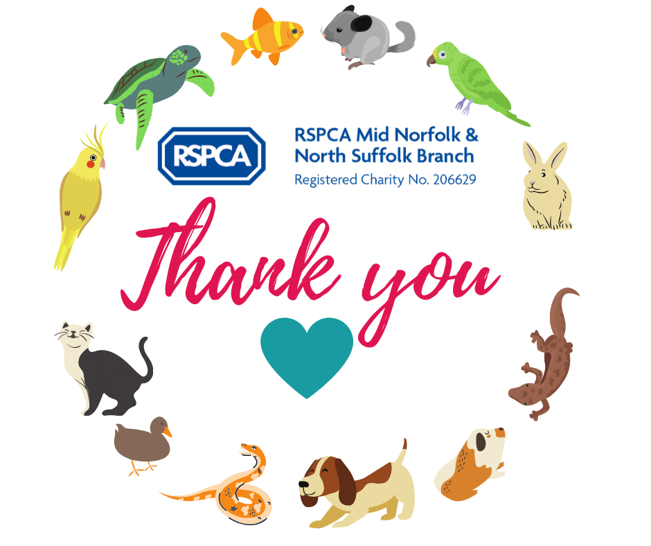 Here is a message of thanks to all of our lovely, dedicated volunteers. We couldn't do what we do without you!