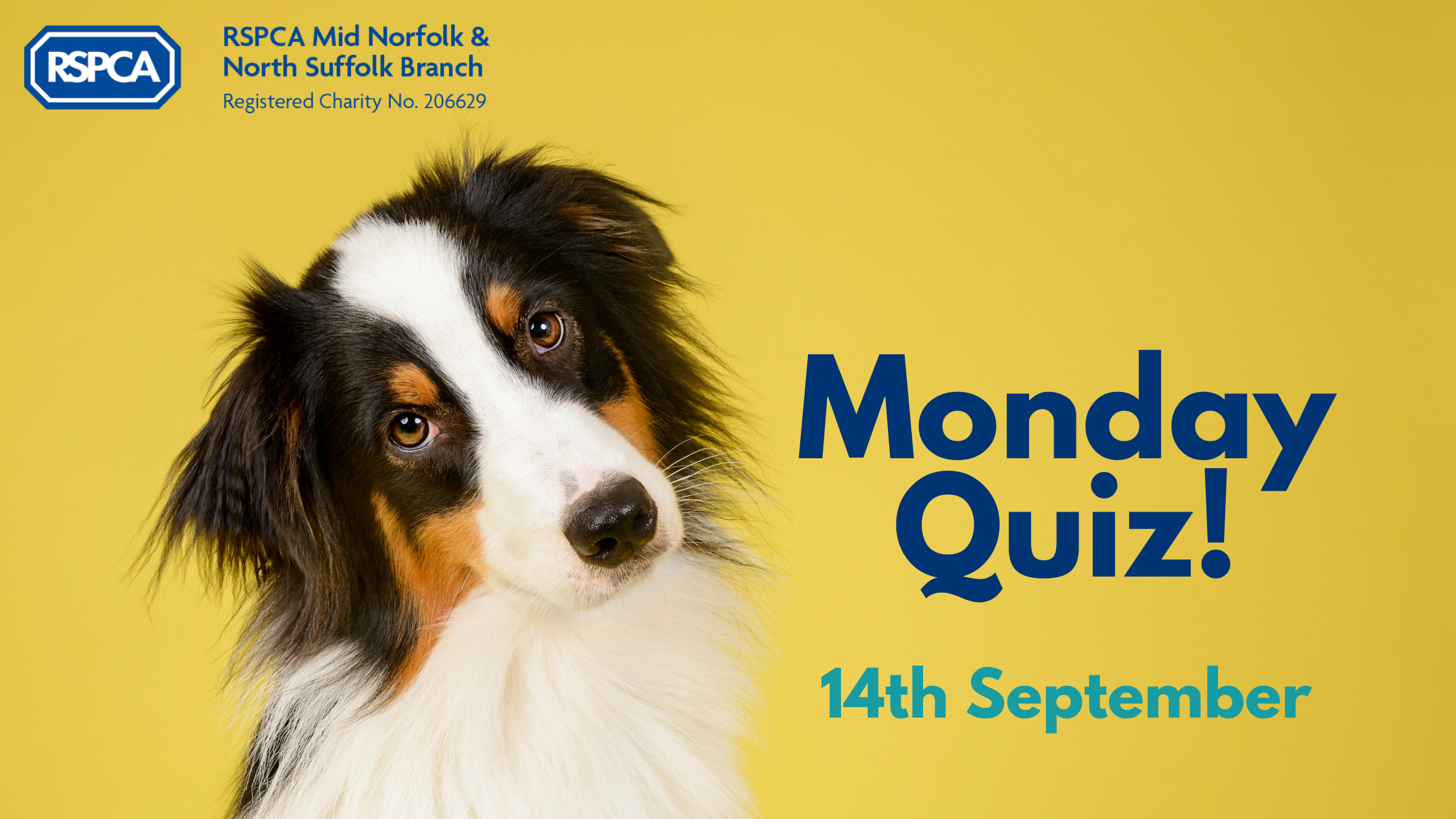 Monday Quiz! – 14th September