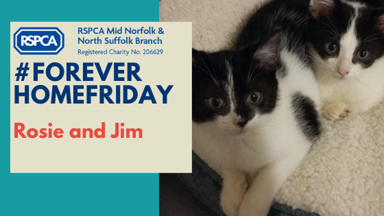 Rosie and Jim #ForeverHomeFriday