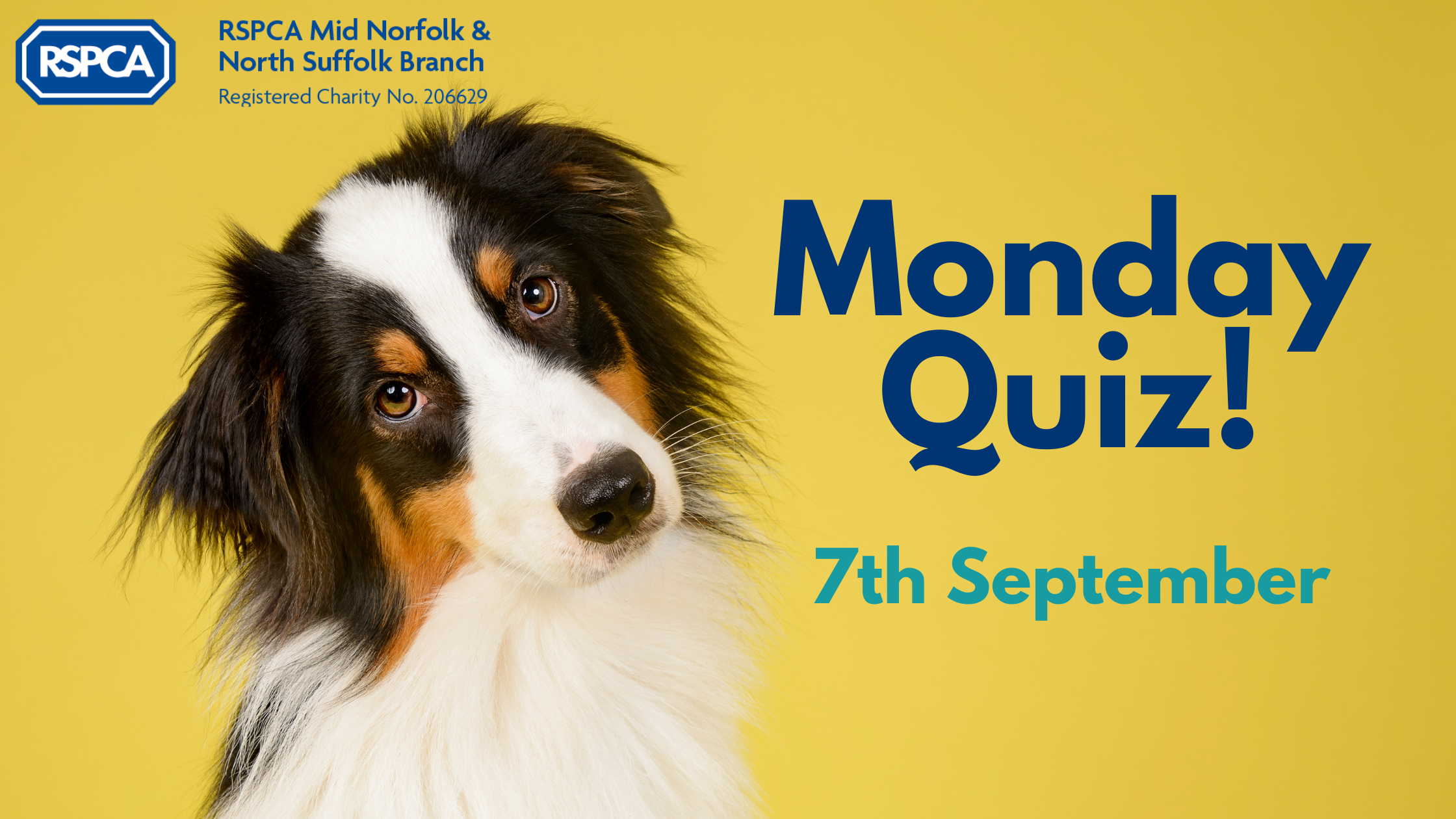 Monday Quiz! – 7th September