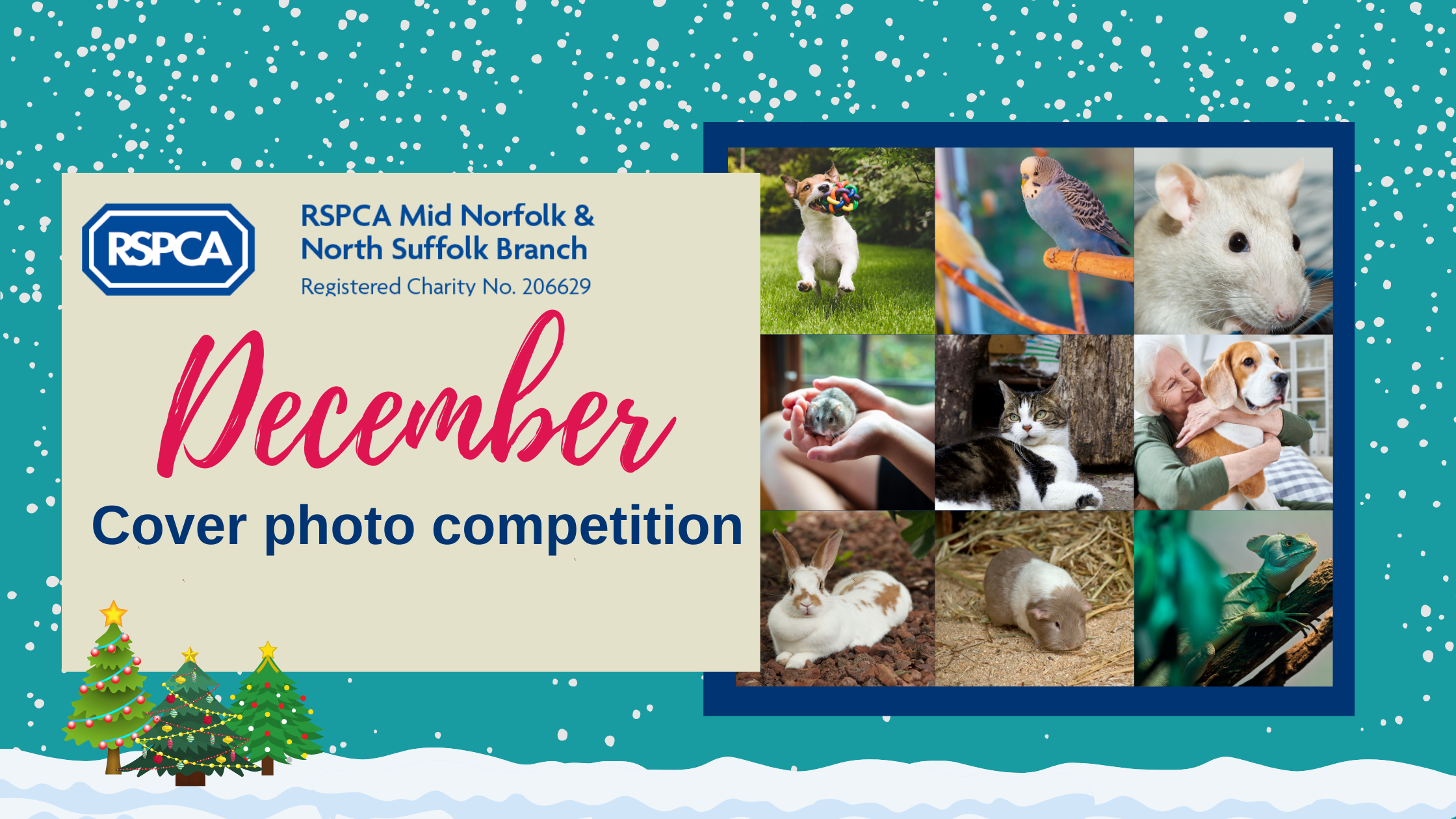December cover photo competition!