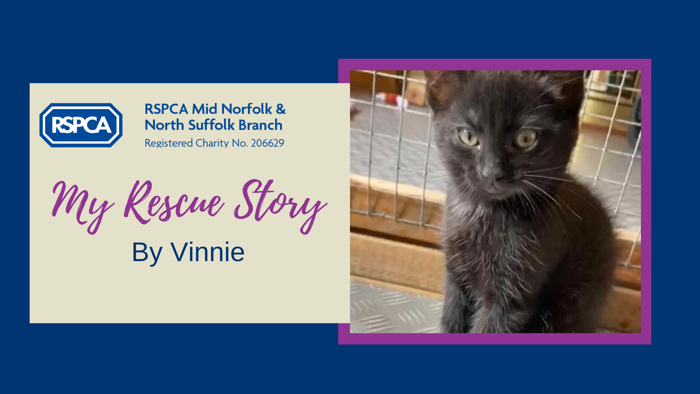 My rescue story