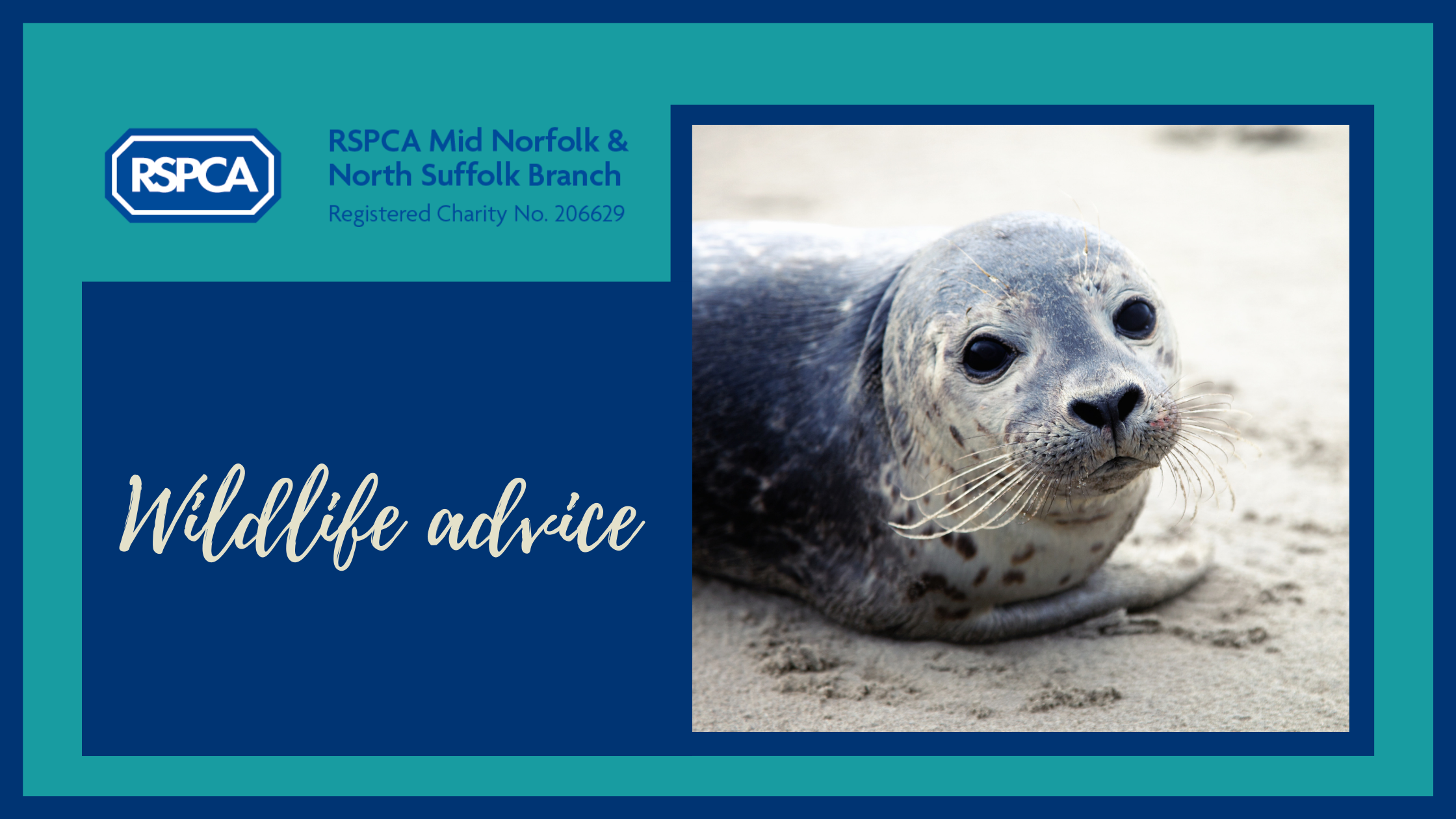 Please keep away from seals